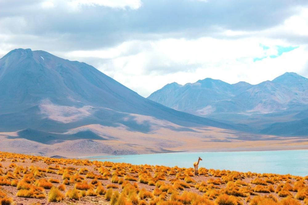 Grands Explorateurs (CHILI, la poésie des extrêmes)