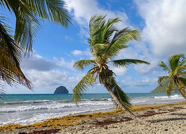 Spectacle Les Grands Explorateurs: MARTINIQUE ET GUADELOUPE, les îles du vent présenté au Carré 150  de Victoriaville